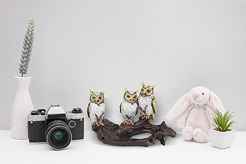 Creative Lookbook and Commercial Photography 15